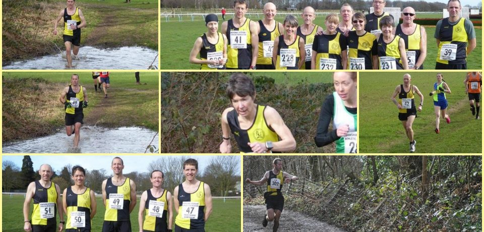 YKH Round Up w.e 5th March – Medals won @ Yorkshire Vet's XC Champs & more..