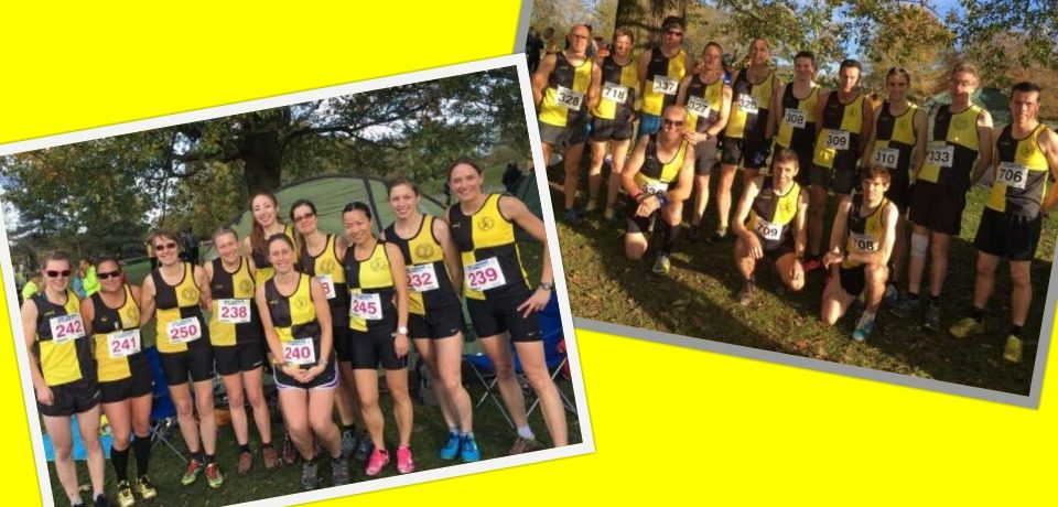 Weekly Round Up w.e 29.Oct ~ Ladies Triumphant at XC & more…
