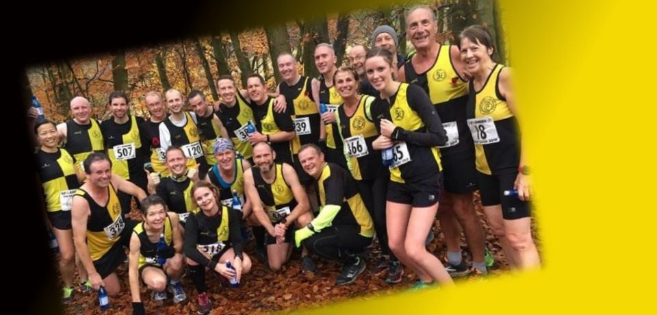 Weekly Racing Round Up – w.e 11th November – Dalby Dash & more…